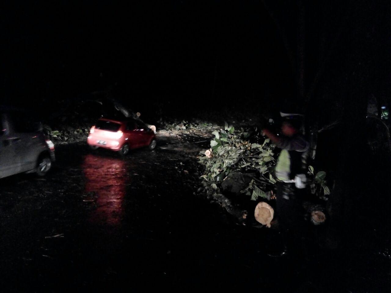 Paska evakuasi Pohon tumbang, anggota Polres Batu tetap layani pengguna jalan