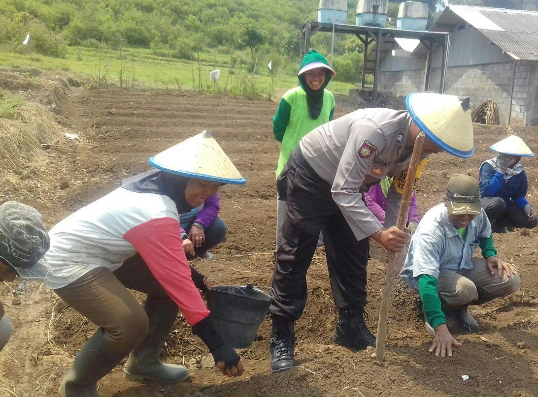 Bhabin Songgokerto Blusukan Kamtibmas bersama kelompok tani