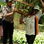 Tingkatkan Kemitraan dengan masyarakat , Bripka Agung W Bhabinkamtibmas Polsek Batu Polres Batu Sambang Petani Sayur