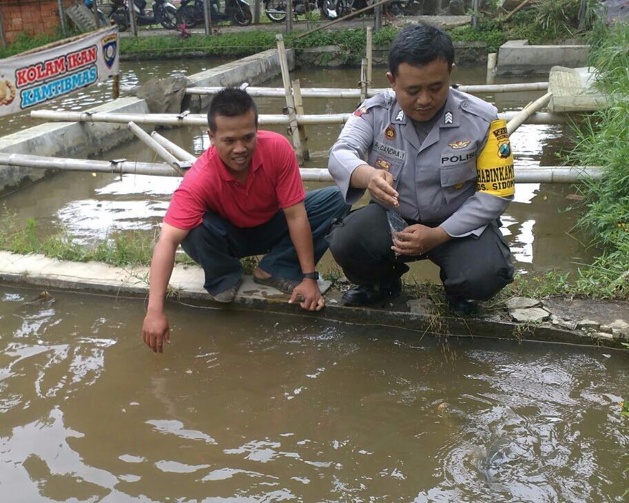 Tingkatkan Kemitraan, Bhabinkamtibmas Polsek Batu Polres Batu Sambang Petani Ikan