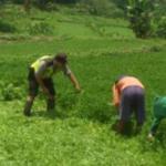 Tingkatkan Kemitraan dengan masyarakat Bripka Arif M. Bhabinkamtibmas Polsek Bumiaji Polres Batu lebih Dekat Dengan Masyarakat