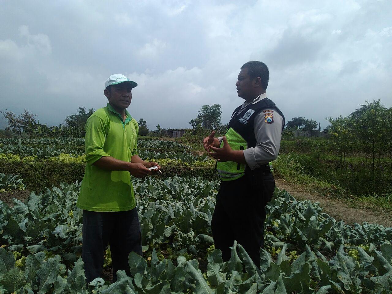 Sambangi Desa Kanit Binmas Polsek Batu Kota Polres Batu Kepada Petani Sayur Desa Sumberejo Batu