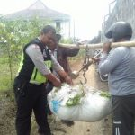 Dekat Dengan Warga, Kanit Binmas Polsek Batu Polres Batu Sambang warga binaan sebagai petani Sayur