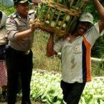 Wujudkan Harkamtibmas kepada masyarakat , Bhabinkamtibmas Polsek Batu Polres Batu Sambang Petani Sayur
