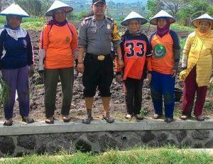 Bhabinkamtibmas Polsek Batu Polres Batu Sambang Petani Binaan