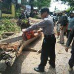 Polsek Junrejo Polres Batu Pengamanan Penebangan Pohon Bersama