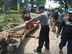 Polsek Junrejo Polres Batu Pengamanan Penebangan Pohon