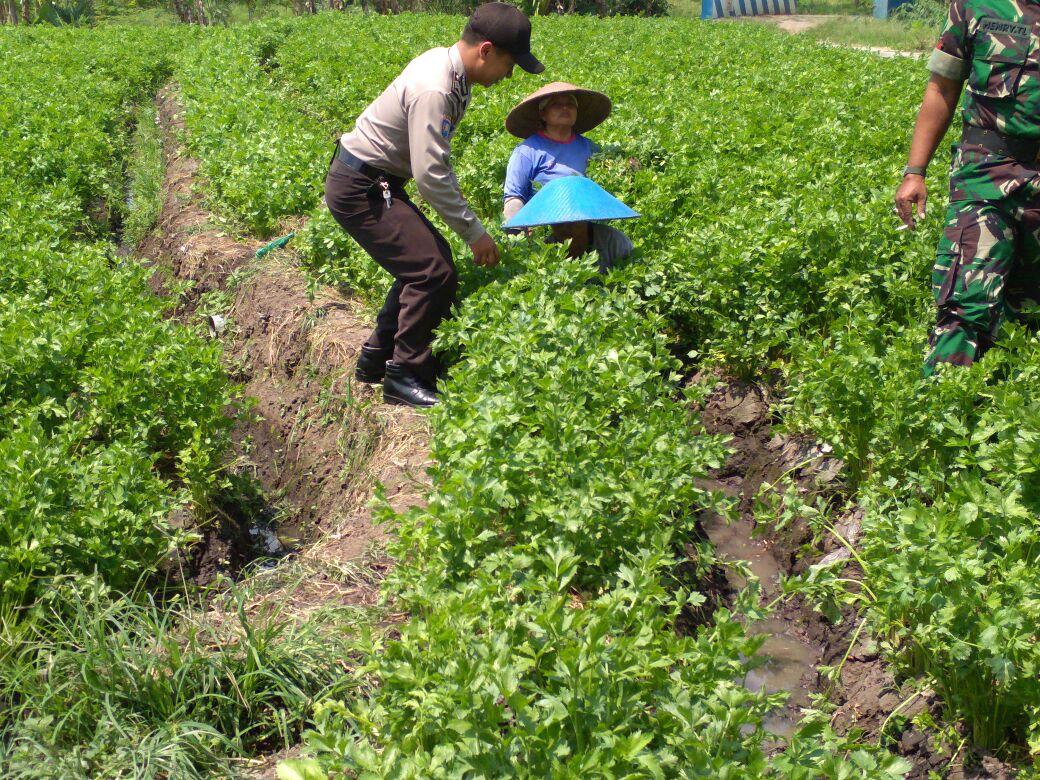 Bhabinkamtibmas Desa Pendem Polsek Junrejo Polres Batu sambang Petani