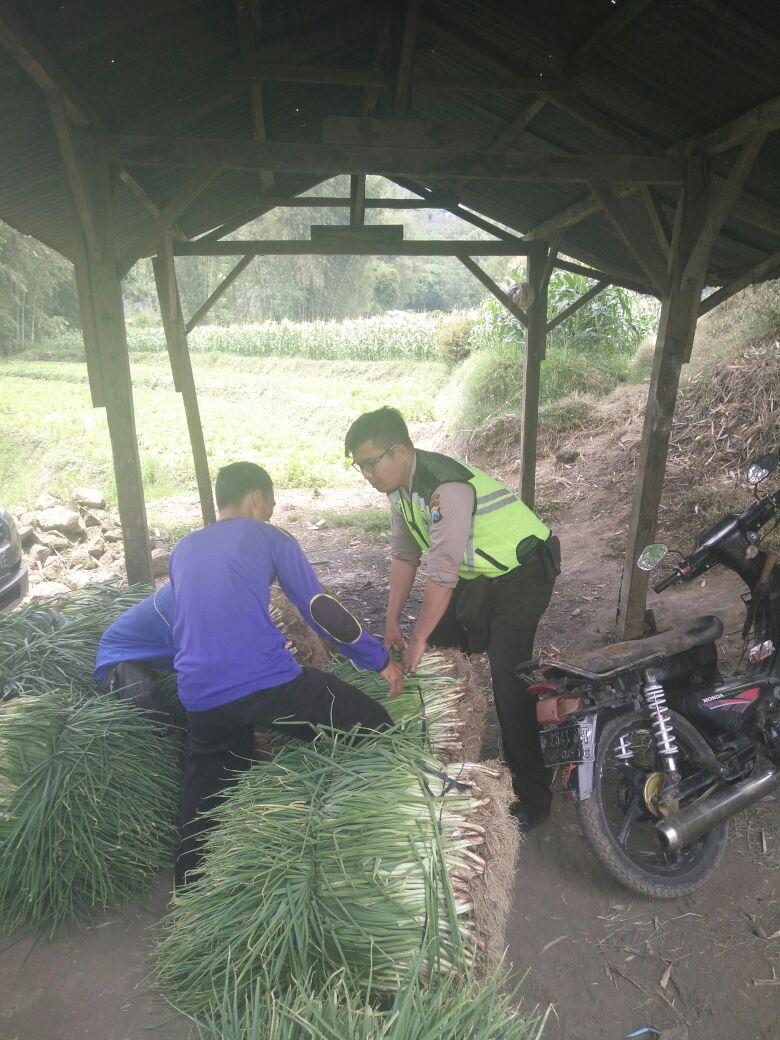 Kemitraan Bhabinkamtibmas Desa Pesanggrahan Polsek Batu Kota Polres Batu Dengan Pedagang Sayur