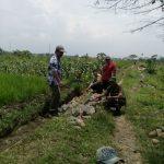 Anggota Bhabinkamtibmas Polsek Junrejo Polres Batu Giatkan Tinjauan Pembuatan Plengsengan