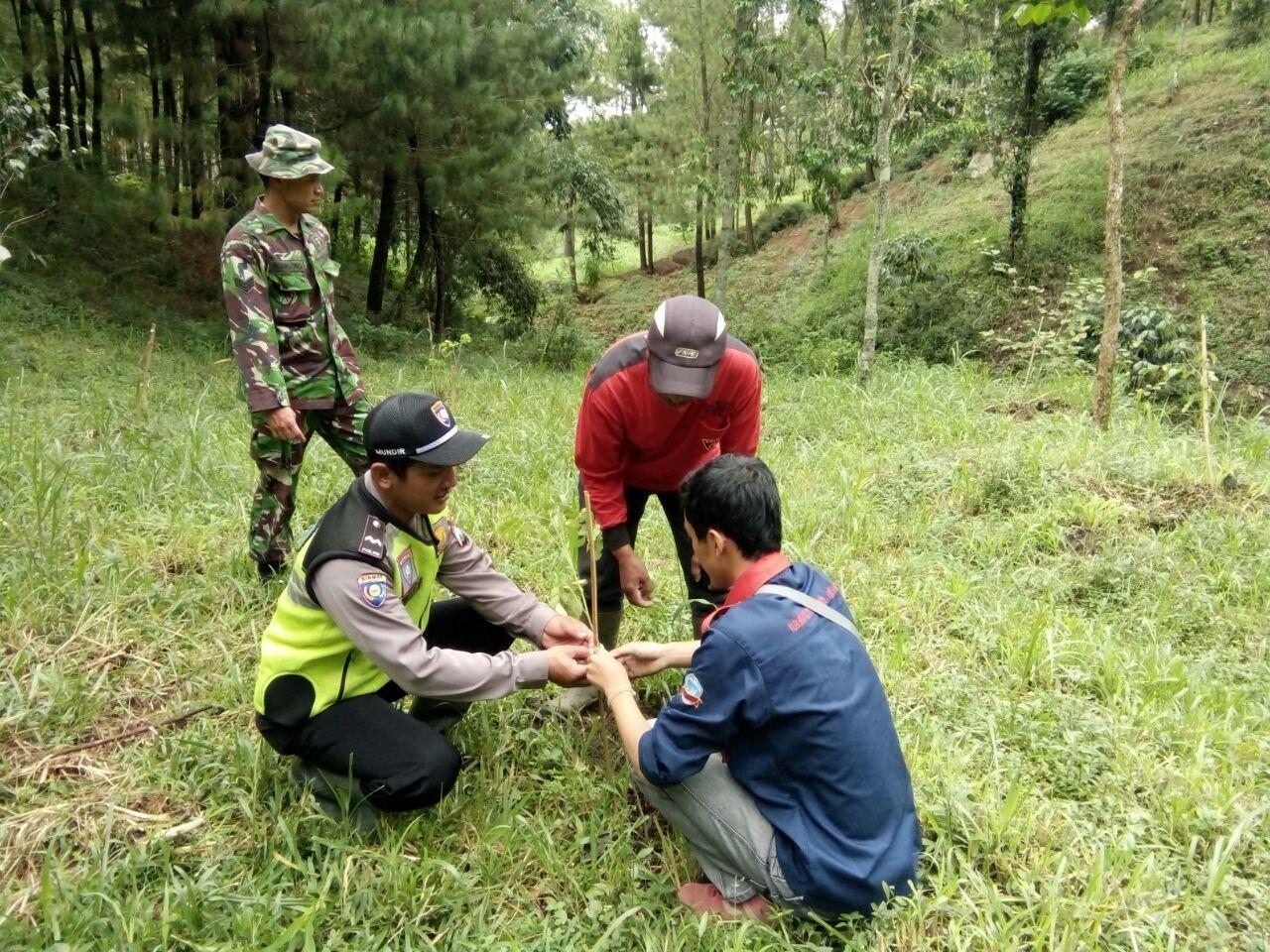 Bhabinkamtibmas Polsek Junrejo Polres Batu Giat Penghijauan Di Desa Madiredo Pujon Berikan Himbauan