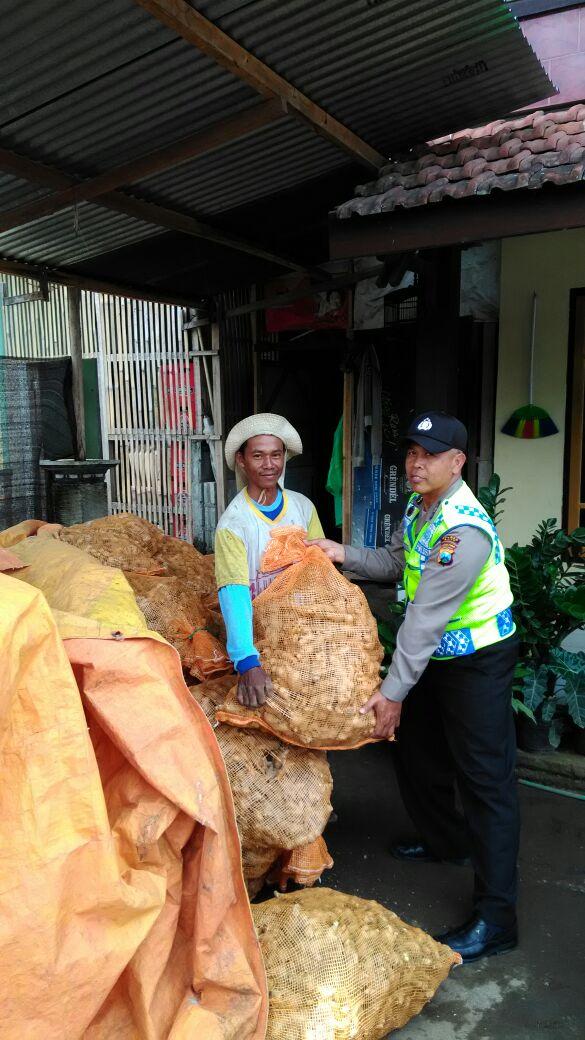 Binmas Desa Tulungrejo Polres Batu Ikut Membantu Petani Panen Jahe