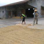 Bersinergi Dengan Masyarakat Bhabin Polsek Batu Polres Batu Dukung Ketahanan Pangan Wilayah Kota Batu