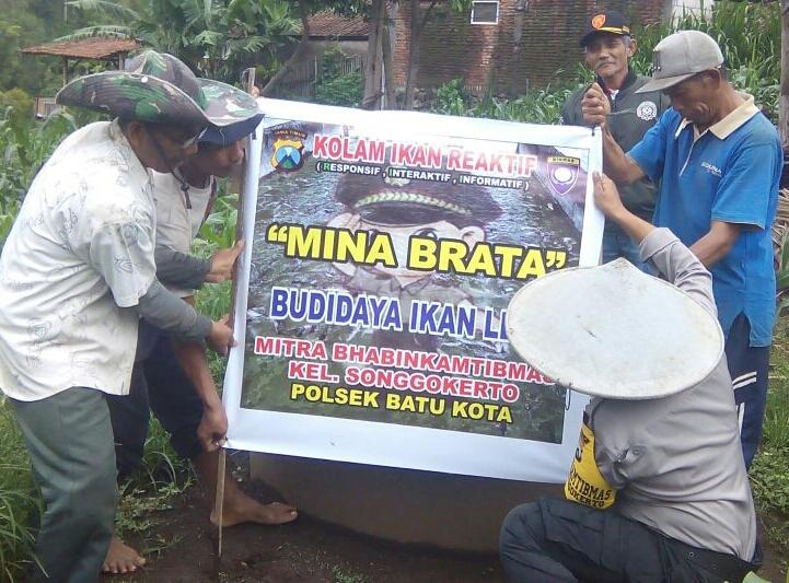 Pemberdayaan Potensi Masyarakat Budidaya Ikan Lele Binaan Bhabin Polsek Batu Polres Batu