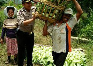 Wujudkan Kamtibmas, Bhabin Polsek Batu Polres Batu Sambang Petani Sayur