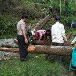 Anggota Bhabin Polres Batu Amankan Giat Pemotongan Pohon