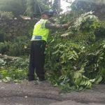 Kapolsek Junrejo Polres Batu bersama Anggota amankan pohon tumbang di jalan Diponegoro Desa Junrejo.