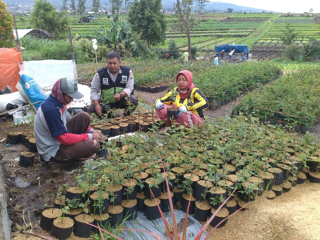 Anggota Polsek Batu Polres Batu Sambang Petani Bunga Mawar
