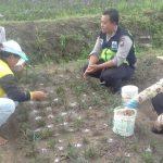 Anggota Bhabin Polsek Batu Polres Batu Patroli Sambang DDS Ke Petani Bunga Desa Binaan