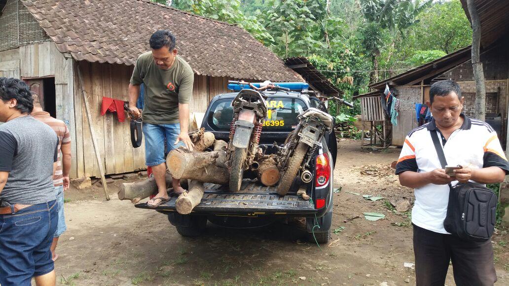 Polsek Kasembon Polres Batu Berhasil Tangkap tersangka diduga Mencuri Kayu
