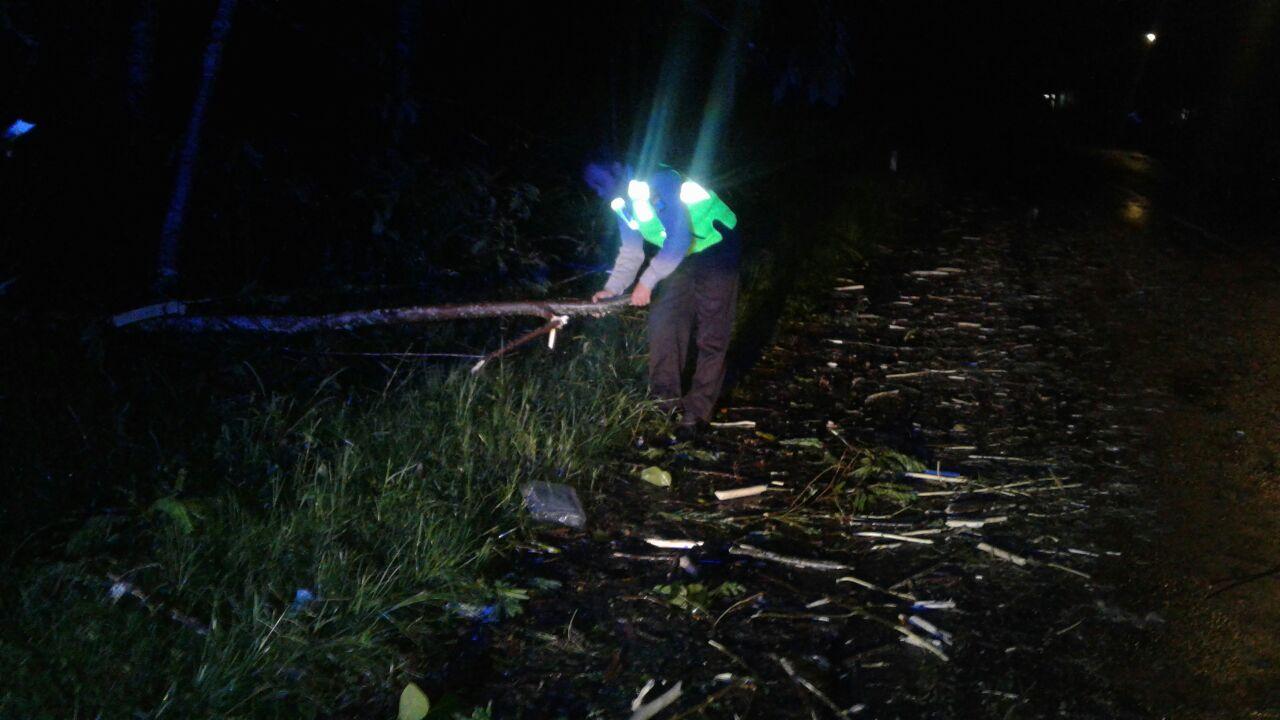 Anggota Polsek Ngantang Polres Batu Dengan Cekatan membantu Mengevakuasi Pohon Tumbang