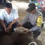Anggota Bhabinkamtibmas Polsek Batu Kota Polres Batu Datang Kunjung Kemitraan Pengelola Limba Ternak BBPP