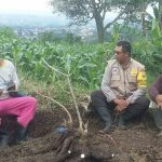 Bhabin Songgokerto Polsek Batu Kota Polres Batu Giatkan Sosialisasi Untuk Kerukunan Tani