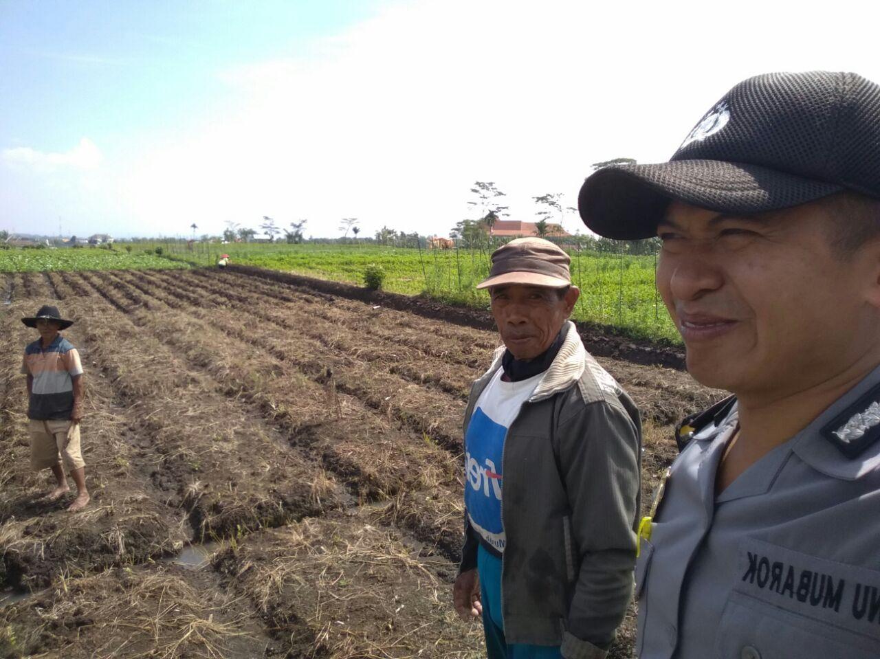 Bhabin Pendem Polsek Junrejo Polres Batu Giatkan Silaturahmi Di Area Persawahan Punya Warga Desa Binaan