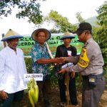 Klompen capir Lomba cerdas cermat pertanian Satgas Kemitraan Bhabin Polsek Batu Polres Batu di Songgokerto