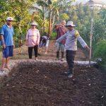 Usaha Pengembangan Pertanian Bhabin Polsek Batu Polres Batu Dengan Masyrakat