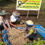 Satgas Kemitraan Nusantara Bhabin Kel.Songgokerto Polsek Batu Polres Batu Kota Ajak Warga Budidaya Belut Dalam Kolam Terpal