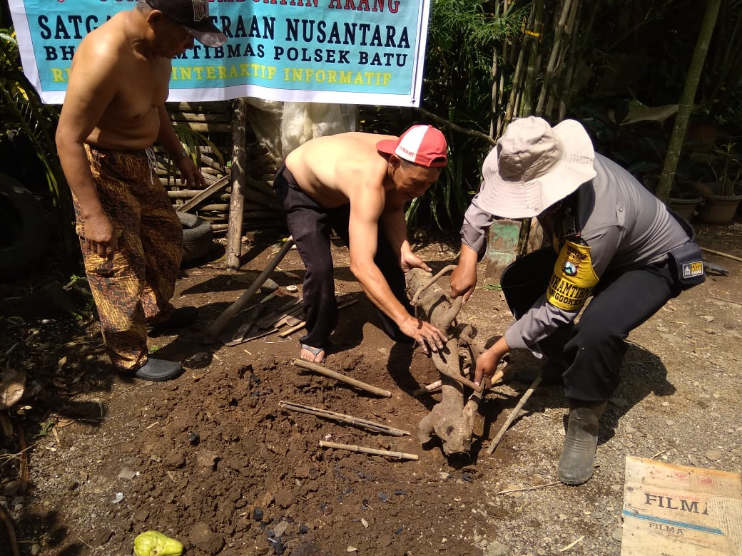 Pemberdayaan Masyarakat Bhabin Kel.Songgokerto Polsek Batu Kota Polres Batu Berdayakan Warga Untuk Membuat Areng