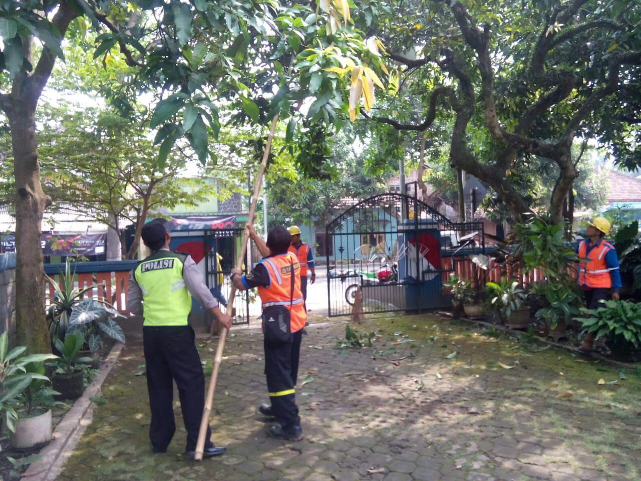 Bhabin Desa Kasembon Polres Batu Pemantauan PLN Perempesan Pohon