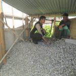 Bhabinkamtibmas Desa Pesanggrahan Polsek Batu Sambang Warga Pencari Batu Kali