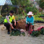 Sambang Tani Bunga Bhabin Desa Pesanggrahan Polsek Batu Kota Polres Batu Sosialisasi Layanan Android Apel