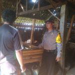 Kunjungan Pemberdayaan Potensi Peternakan Bhabinkamtibmas Kelurahan Songgokerto Polsek Batu Kota