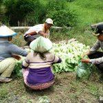 Bhabinkamtibmas Kel Sisir Polsek Batu Kota Sampaikan Program Layanan Aplikasi Apel