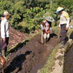 Bhabin Kelurahan Songgokerto Polsek Batu Kota Kerja Bhakti Membersihkan Saluran Berinergi Masyarakat TaniIrigasi
