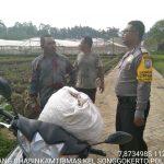 Bhabinkamtibmas Kelurahan Songgokerto Polsek Batu Kota Polres Batu Sampaikan Pesan Kamtibmas Kepada Pembuatan Pupuk Kompos