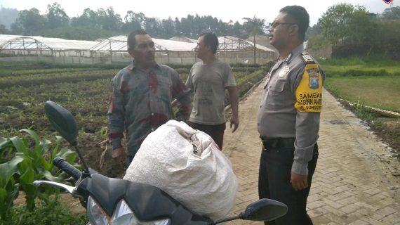 Sambang Sore Bhabinkamtibmas Kelurahan Songgokerto Polsek Batu Kota Polres Batu Pembuatan Pupuk Kompos
