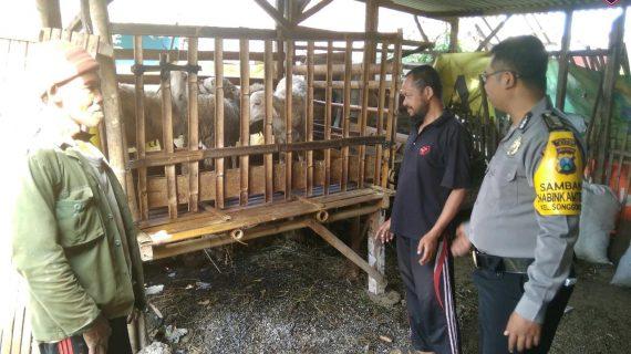 Giat Sambang Desa Kunjungan Potensi Peternakan Bhabinkamtibmas Kelurahan Songgokerto Polsek Batu Kota Polres Batu