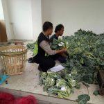 Bhabinkamtibmas Desa Oro Oro Ombo Polsek Batu Kota Sampaikan Layanan Android