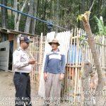 Kegiatan Sambang Silaturahmi Kamtibmas Ke Masyarakat Desa Hutan Bhabinkamtibmas Kelurahan Songgokerto Polsek Batu Polres Batu laksanakan dds