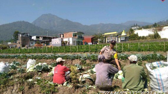 Sambang Desa Oleh Anggota Bhabinkamtibmas Kelurahan Songgokerto Polsek Batu Kota Polres Batu Tingkatkan Kepercayaan Masyarakat terhadap Polri