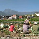 Melaksanakan Giat Sambang Desa Bhabinkamtibmas Kelurahan Songgokerto Polsek Batu Polres Batu Tingkatkan Kepercayaan Masyarakat terhadap Polri