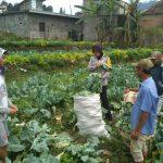 Sambang Kunjungi Potensi Pertanian Warga Bhabinkamtibmas Desa Pesanggrahaan Polsek Batu Kota