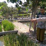 Anggota Bhabinkamtibmas Sambang dan Silaturahmi Warga, Sambang Warga Bhabinkamtibmas Songgokerto Polsek Batu Pengolahan Padi Apung