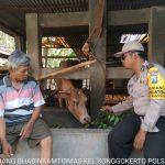 Kegiatan Sambang Silaturahmi Kamtibmas Potensi Ternak Bhabin Kelurahan Songgokerto Polsek Batu Sampaikan Pesan Kamtibmasserta berikan binluh tentang pelaksanaan Pilpres 2019