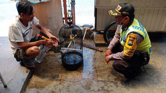 Kegiatan Door To Door System Rumah Warga Bhabin Kelurahan Temas Polsek Batu Titipkan Pesan Kamtibmas