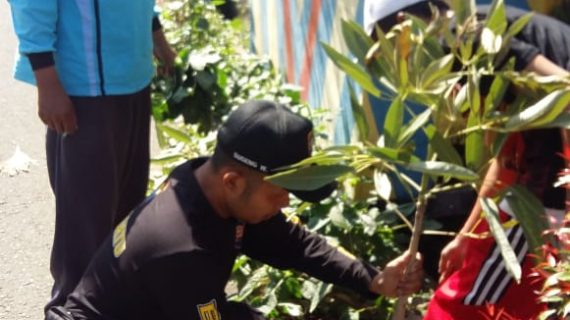 Bhabinkamtibmas Polsek Pujon Polres Batu (3 pilar) Bersama Warga Melaksanakan Giat Penghijauan Di Desa Ngabab